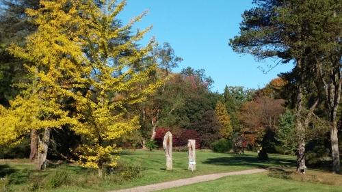 arboretum-park